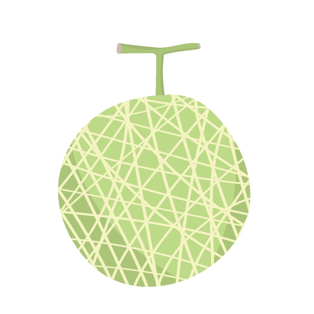 美味しそうなメロンめろんのイラストフルーツ果物 商用