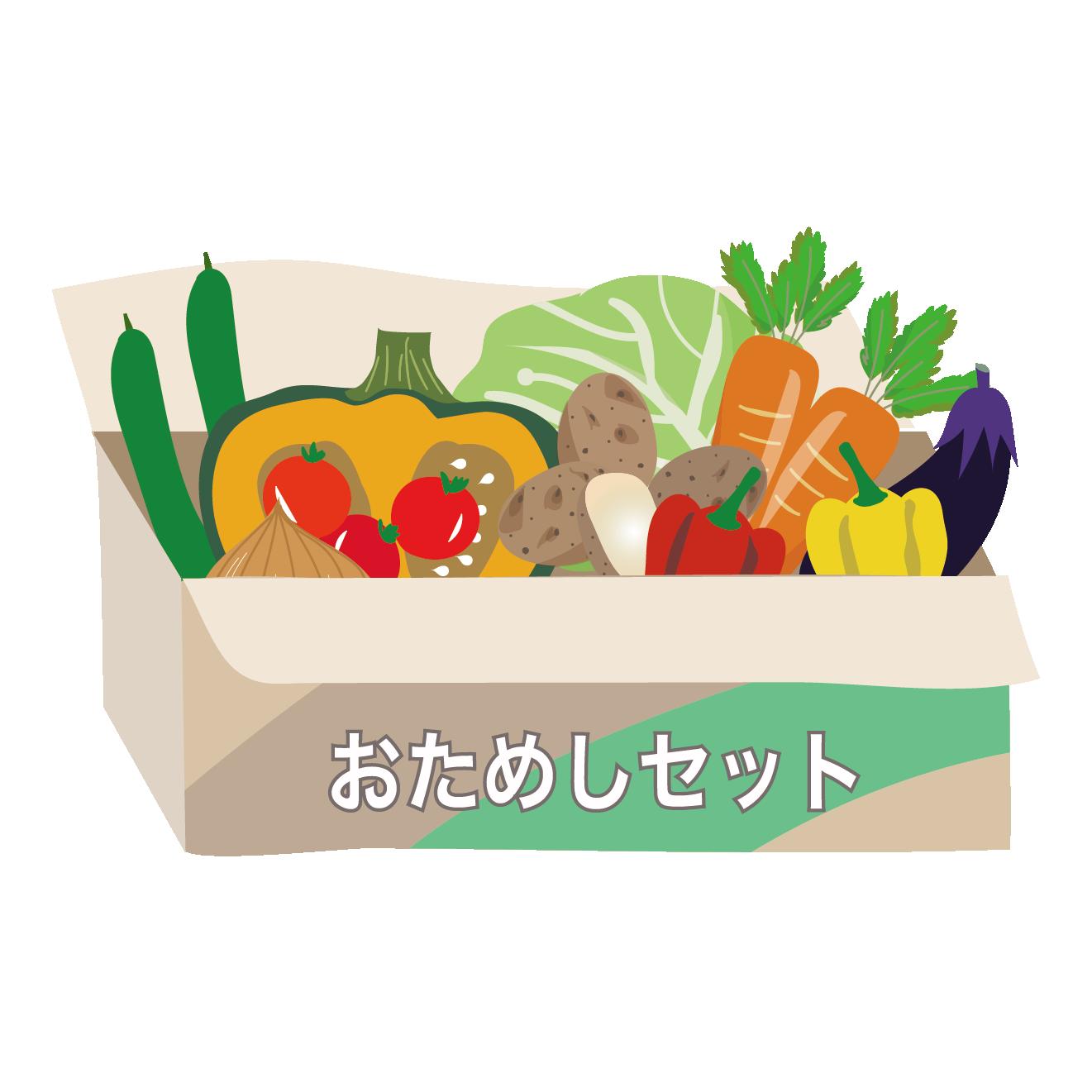 野菜のお試しセット【食材宅配】のイラスト | 商用フリー(無料)の