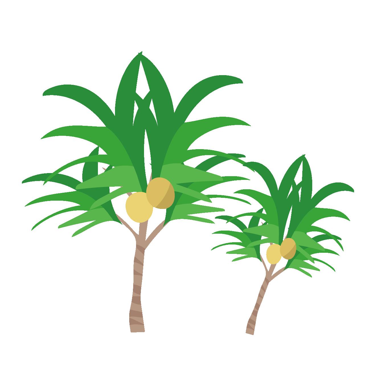 常夏椰子ヤシの木のイラスト 商用フリー無料のイラスト素材なら