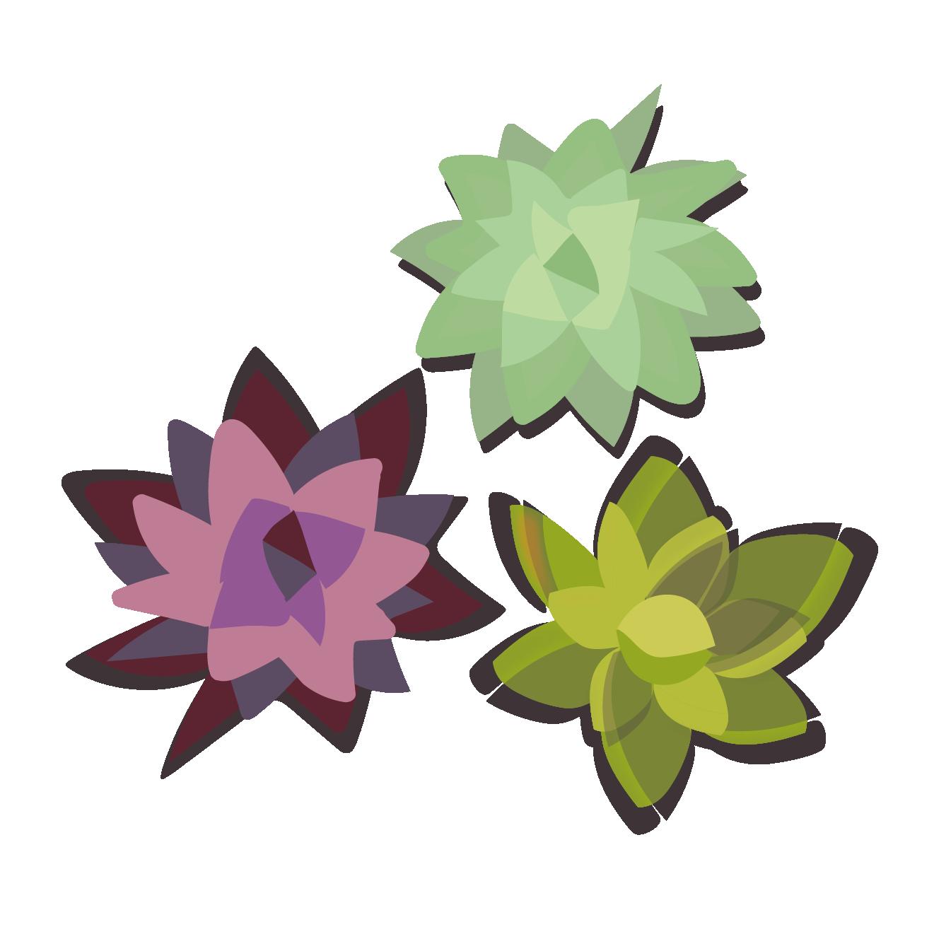 多肉植物のイラストおしゃれでかわいい植物 商用フリー無料の