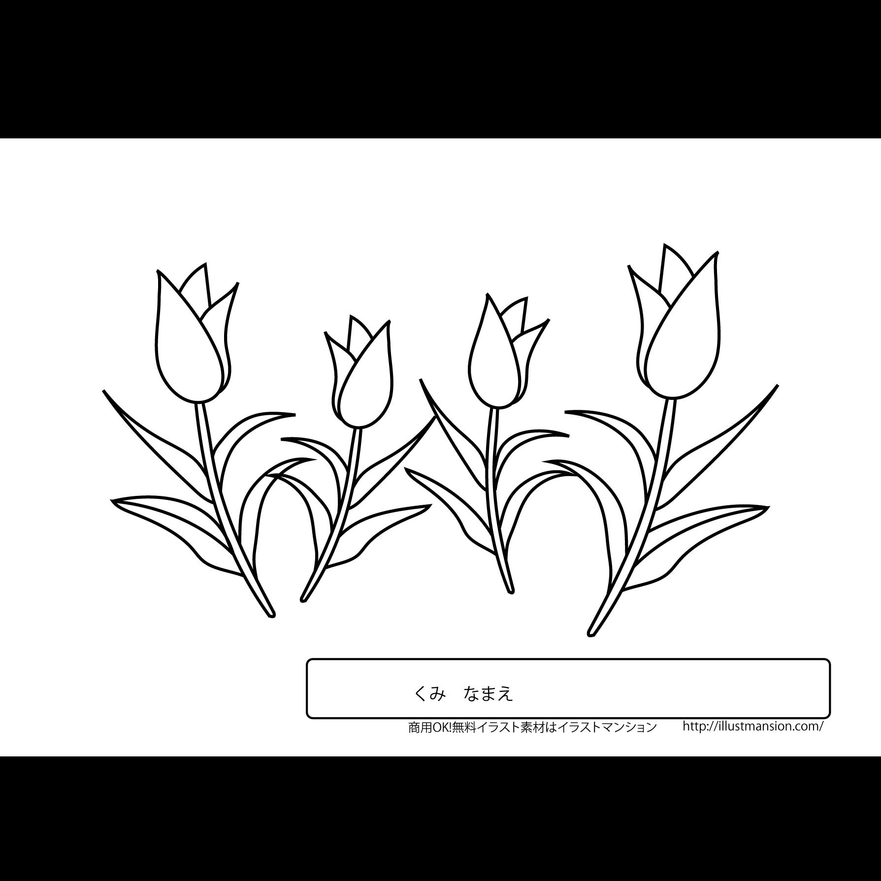 お花チューリップの塗り絵ぬりえのイラスト 商用フリー無料