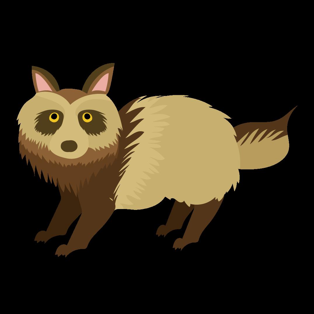 かわいい たぬき英語raccoon Dogの フリー イラスト