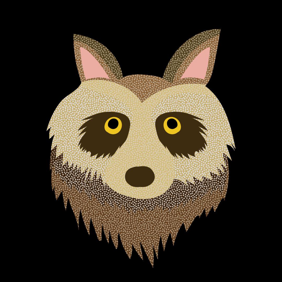かわいいたぬきの顔 のアップ英語raccoon Dog無料