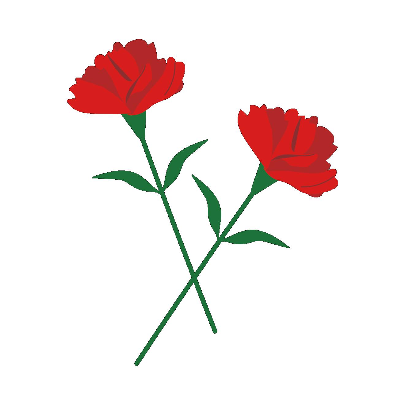 花2輪の花 母の日に赤いカーネーション イラスト 商用フリー無料