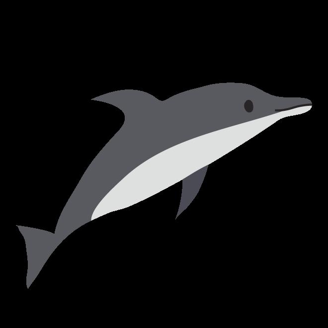 かわいいイルカ の絵 フリー イラスト 商用フリー無料のイラスト
