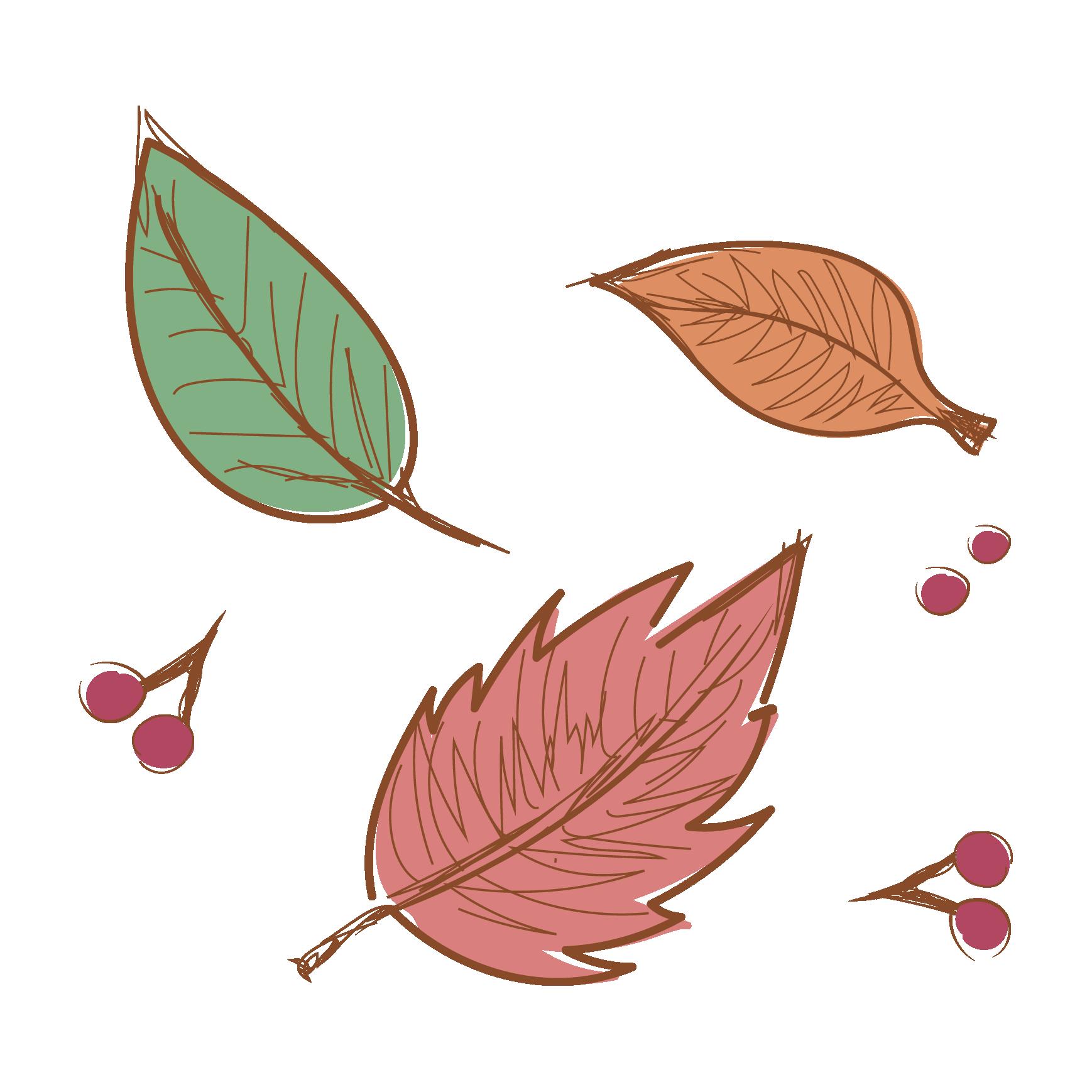 秋の紅葉】落ち葉(葉っぱ)のイラスト | 商用フリー(無料)のイラスト