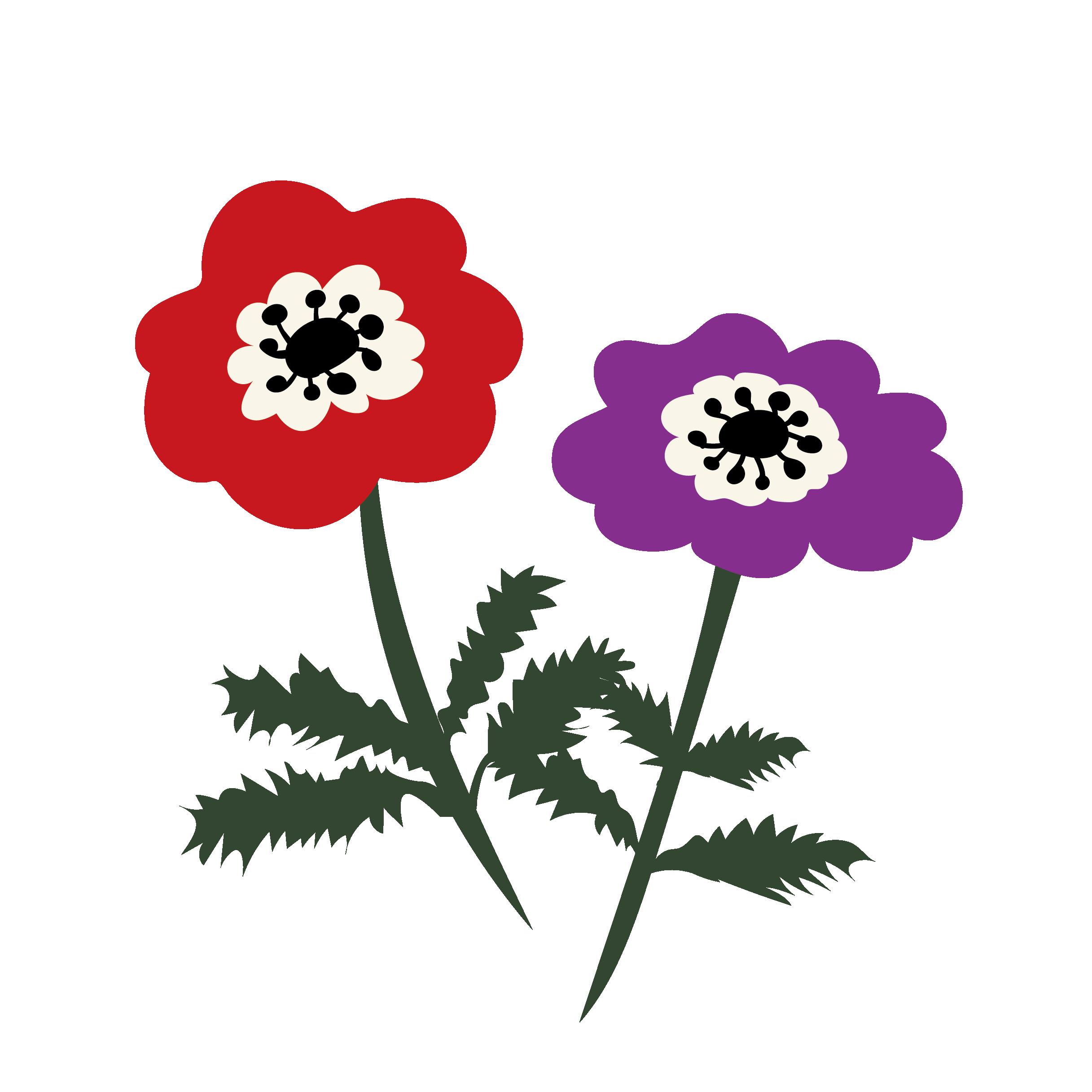 花アネモネのイラスト 商用フリー無料のイラスト素材なら