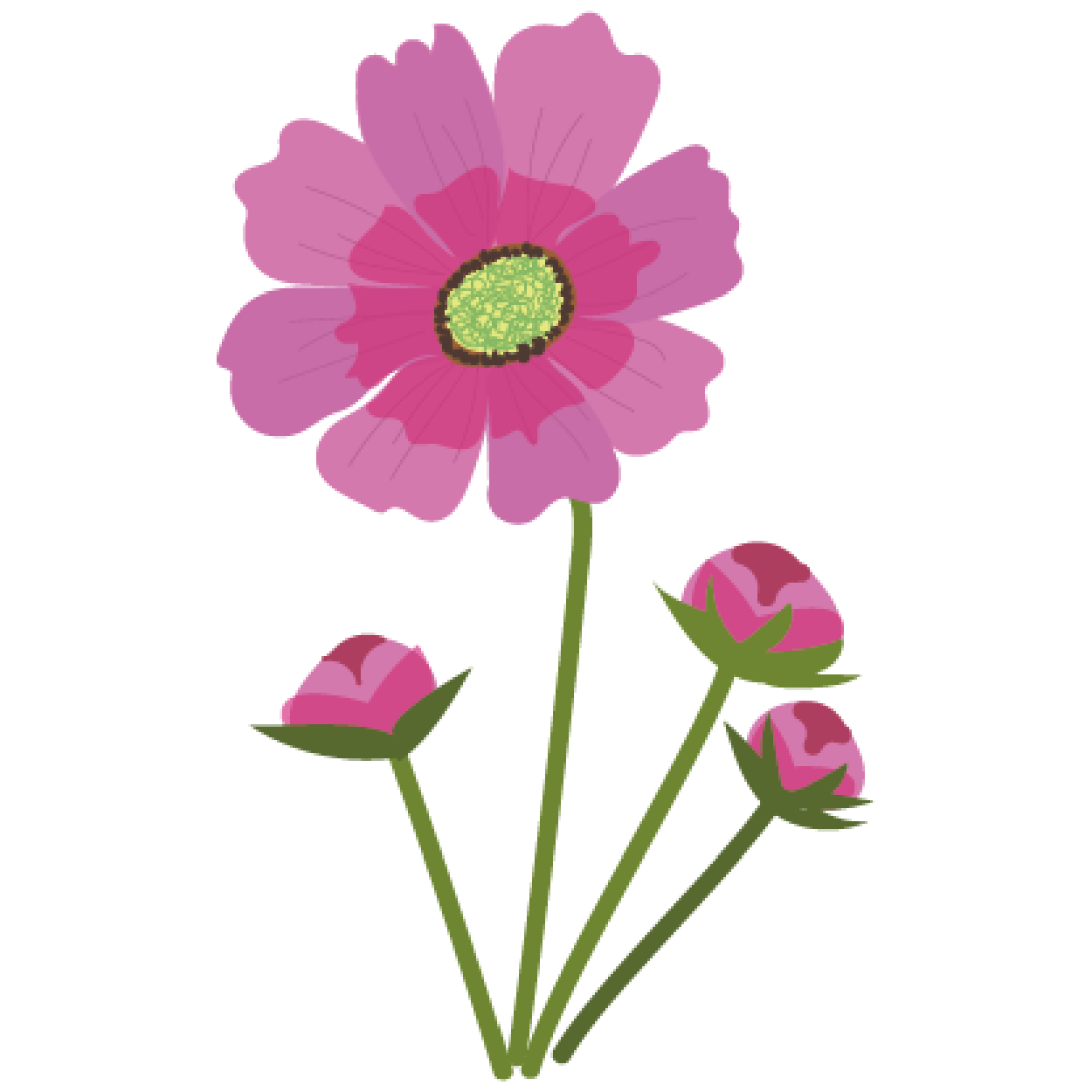 花】コスモスのイラスト | 商用フリー(無料)のイラスト素材なら
