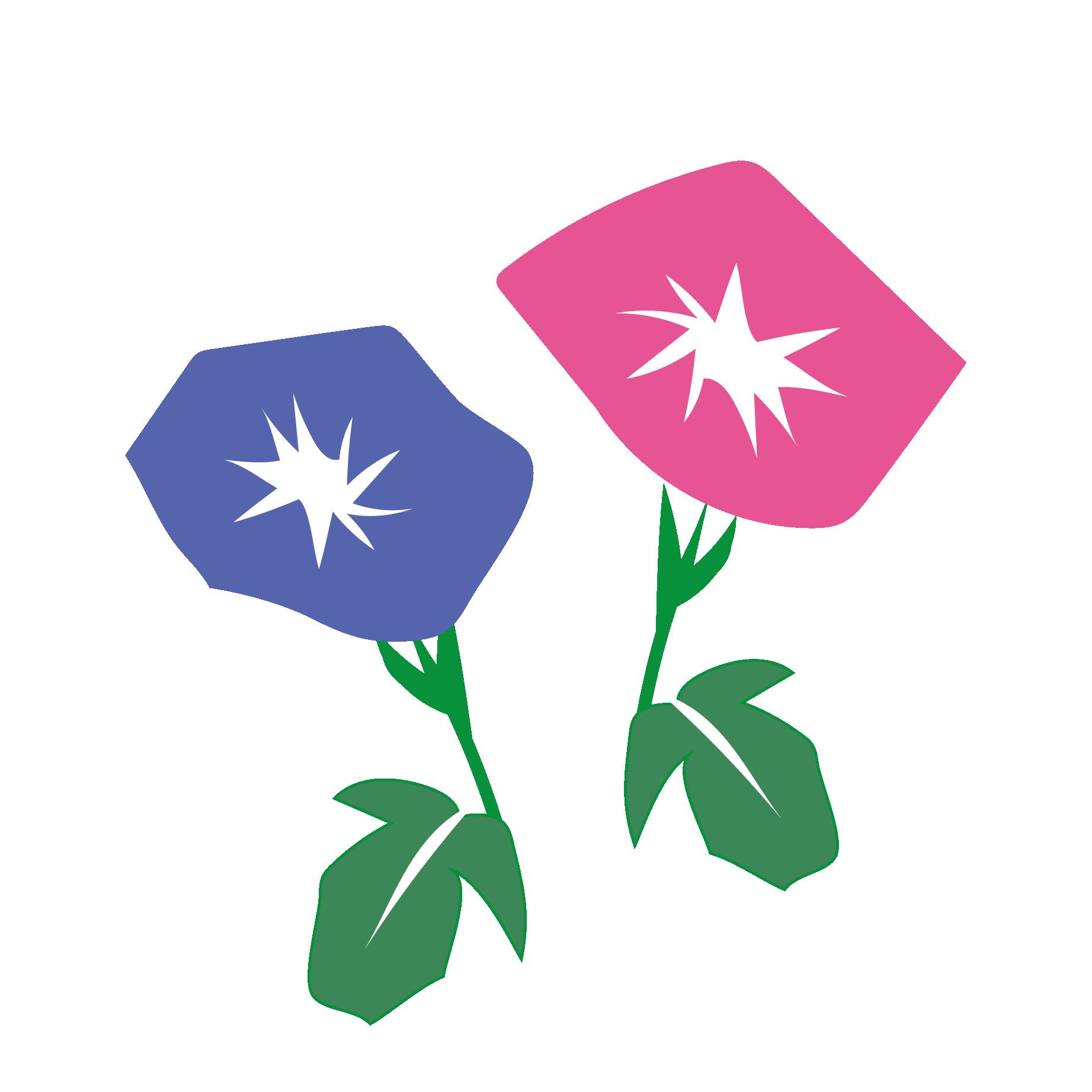 花和風の朝顔アサガオフリー イラスト 商用フリー無料の