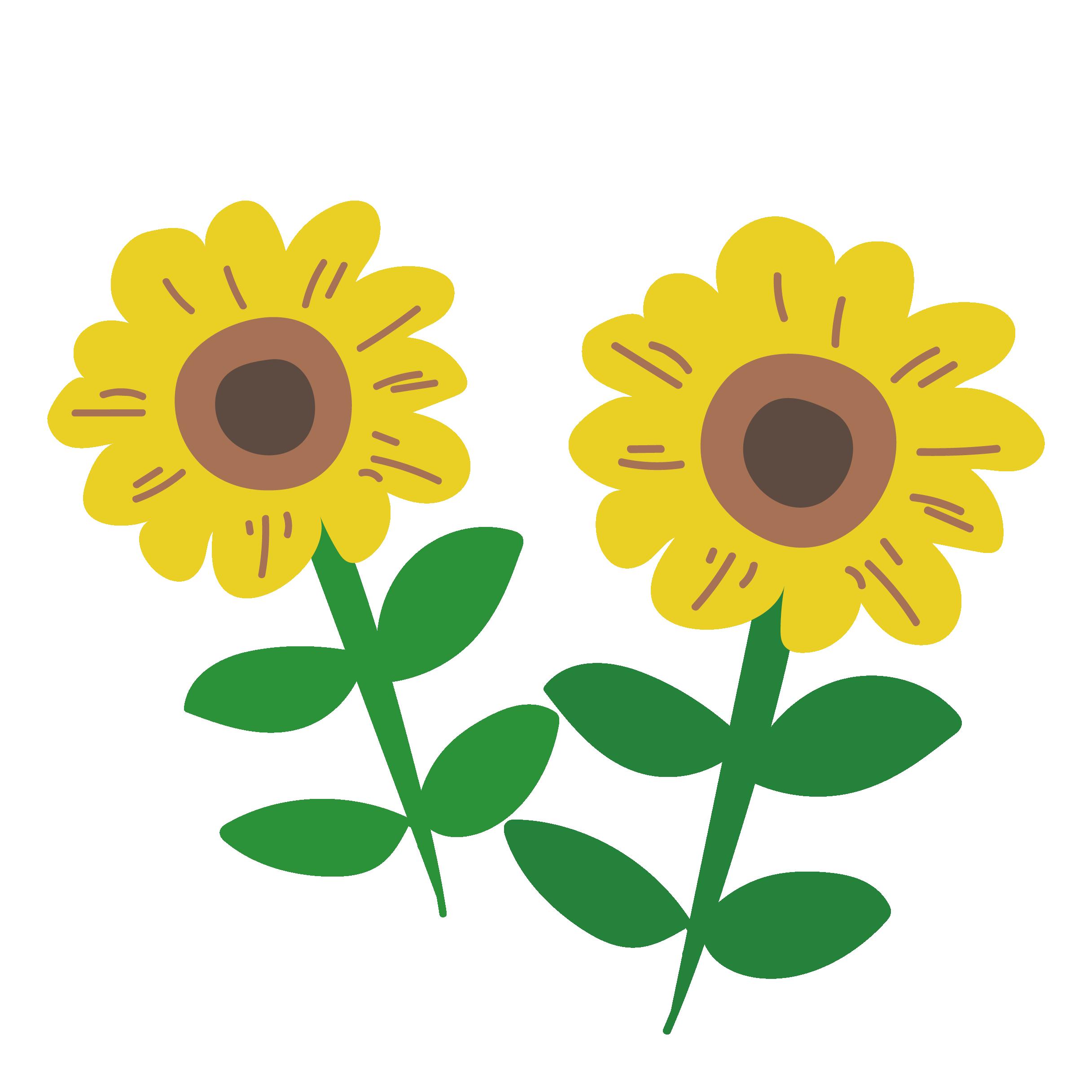 花】popな向日葵(ヒマワリ)イラスト   商用フリー(無料)のイラスト