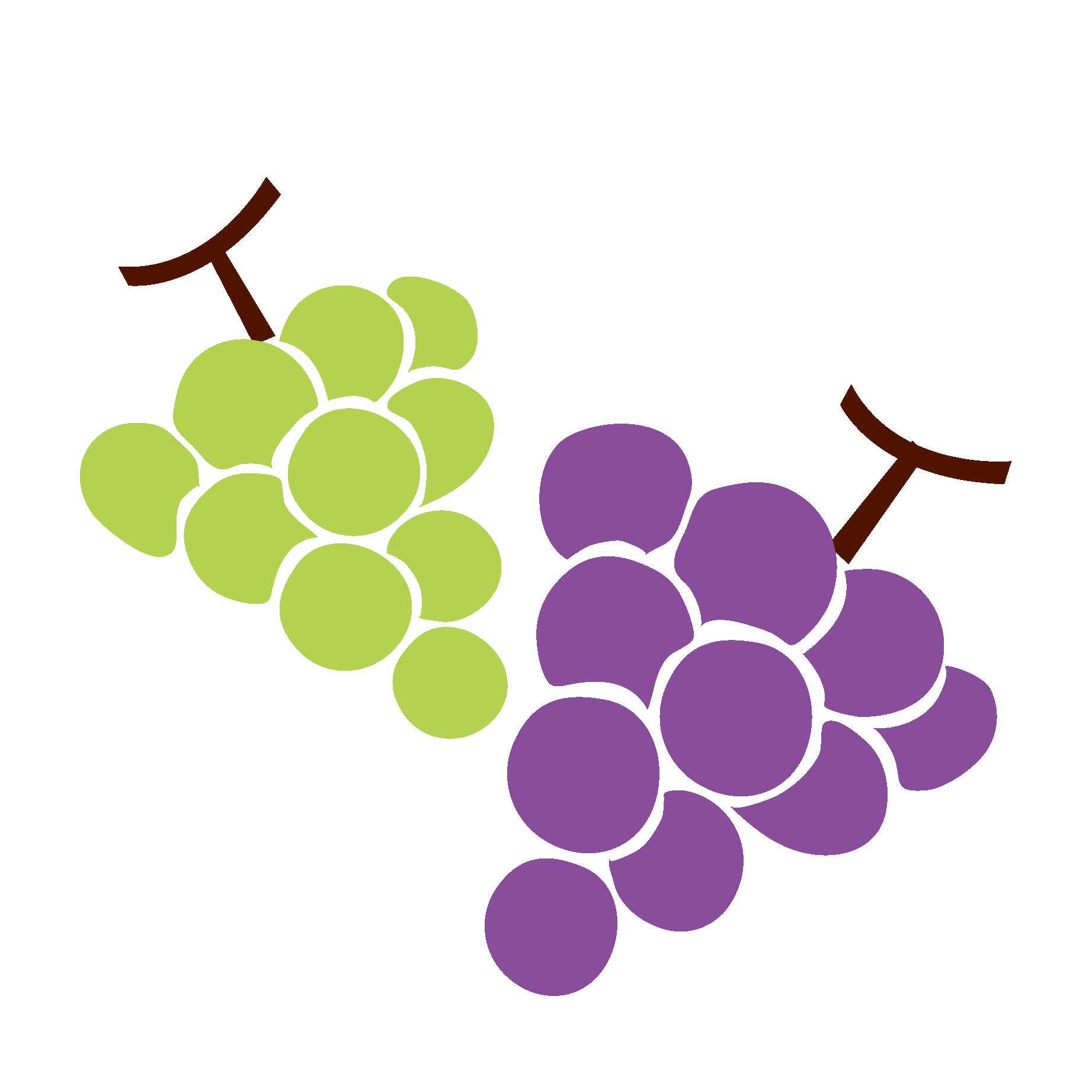 葡萄(ブドウ・ぶどう)とマスカットのイラスト【フルーツ・果物