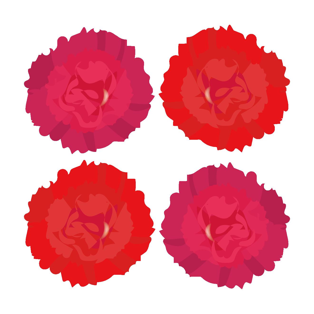 赤のカーネーションの お花の フリー イラスト