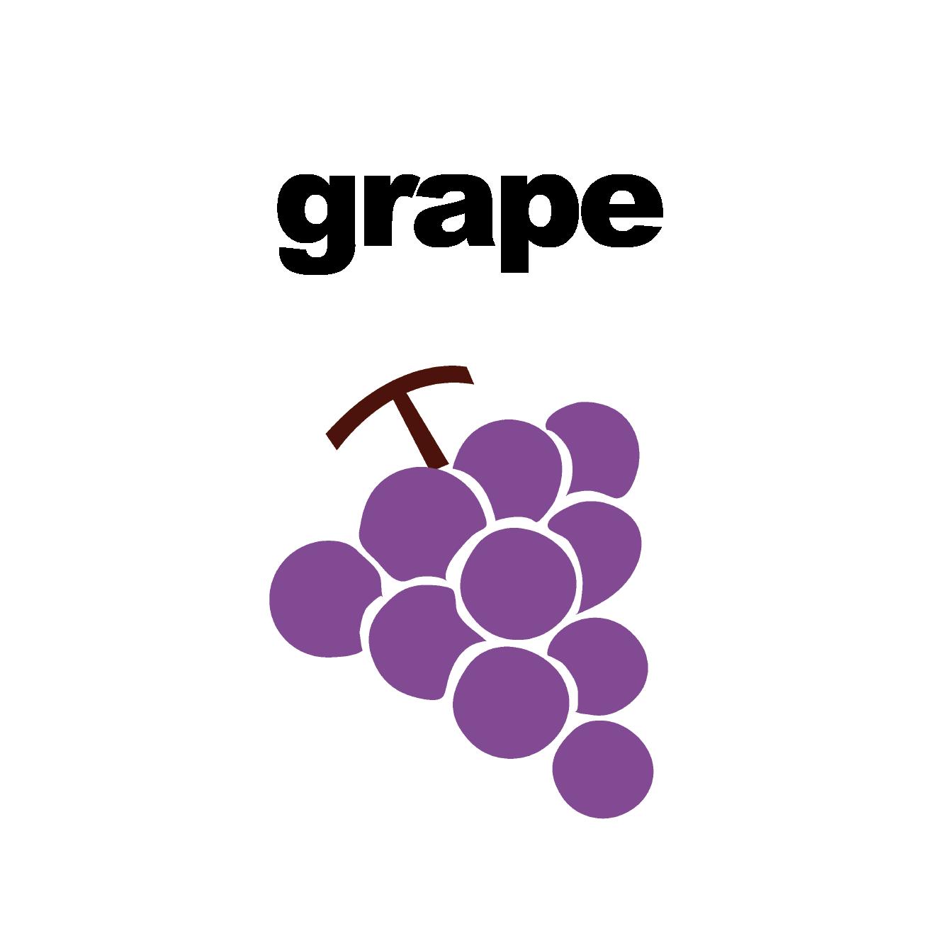 英語フラッシュカード「ぶどう」grape イラスト | 商用フリー(無料)の