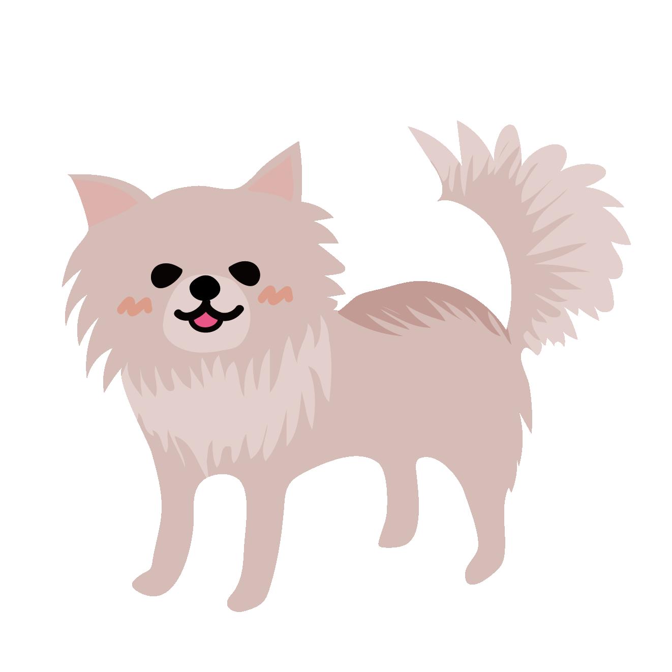 可愛いチワワ犬のイラスト 商用フリー無料のイラスト素材なら