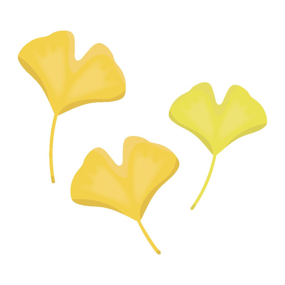 かわいい! イチョウの葉【秋・紅葉】の 無料 イラスト