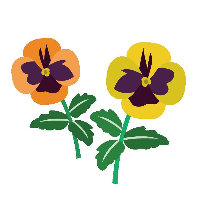 かわいい♪黄色(イエロー)とオレンジのパンジー(花)のイラスト