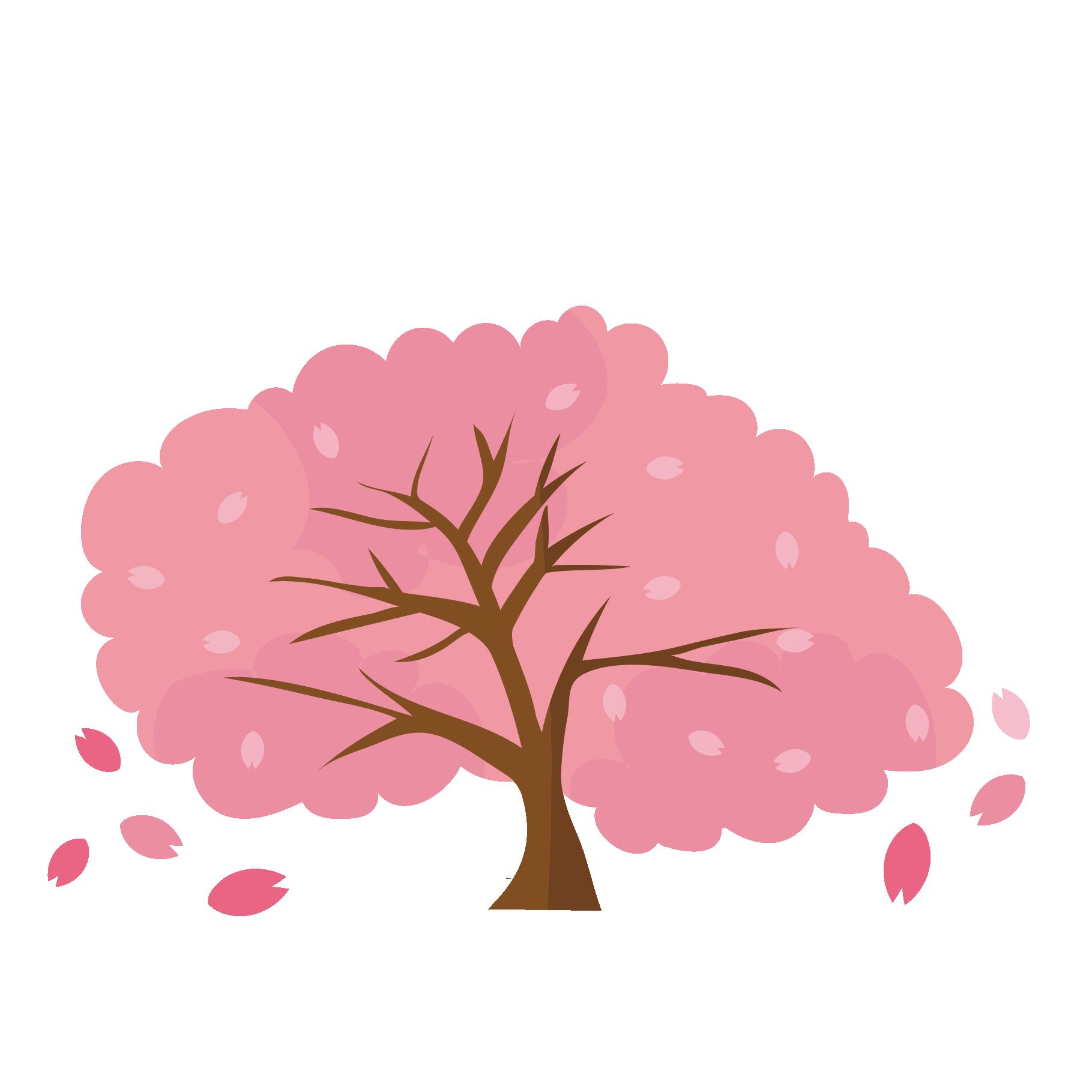 桜さくらサクラの木のイラストお花見 商用フリー無料の
