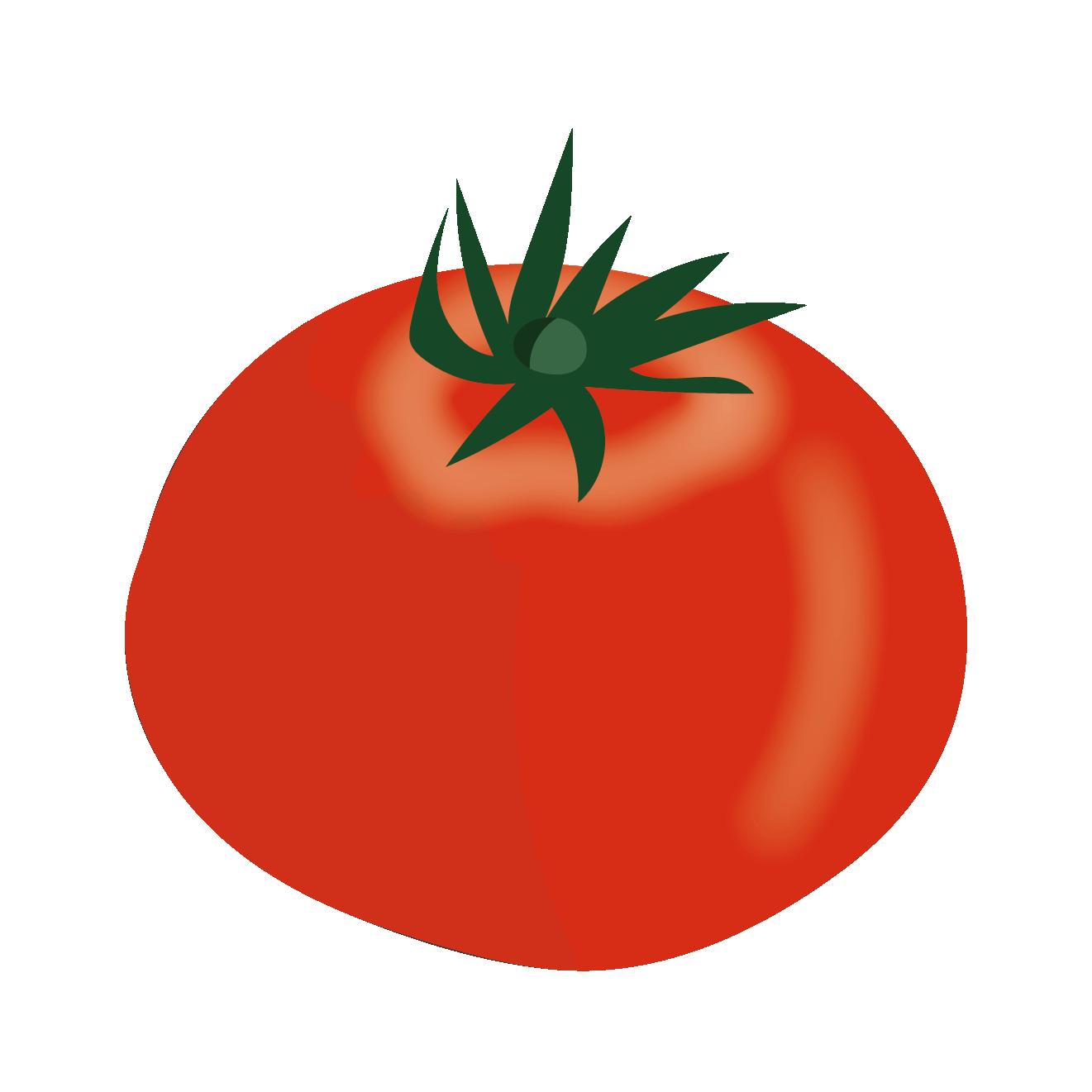 真っ赤なトマトのイラスト野菜 商用フリー無料のイラスト素材