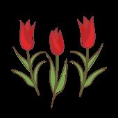 赤いチューリップ の かわいい フリー イラスト