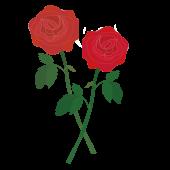 美しい!赤い薔薇(バラ・ばら)の フリー イラスト