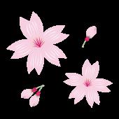 桜(さくら)のかわいい♪ 無料 イラスト