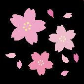 おしゃれで綺麗な 桜(サクラ)のイラスト