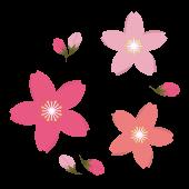カワイイ!桜(サクラ)の花と蕾(つぼみ)のイラスト!